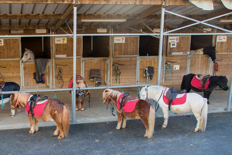 L'atelier centre équestre